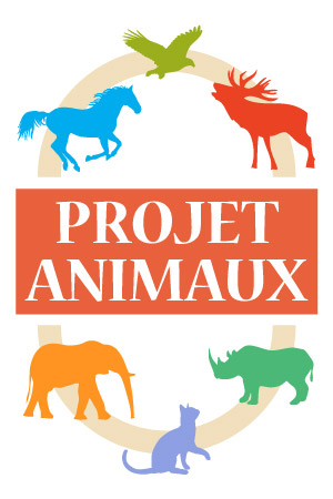projet animaux