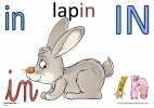 in-lapin